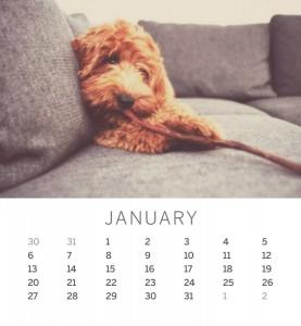 Jofabi 2013 Calendar - January