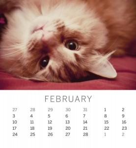 Jofabi 2013 Calendar - February