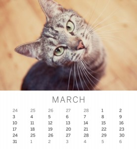 Jofabi 2013 Calendar - March