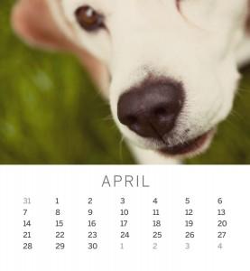 Jofabi 2013 Calendar - April