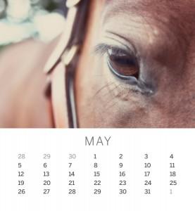 Jofabi 2013 Calendar - May
