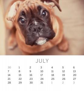 Jofabi 2013 Calendar - July