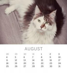 Jofabi 2013 Calendar - August