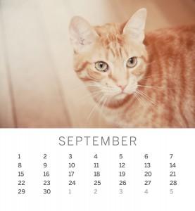 Jofabi 2013 Calendar - September