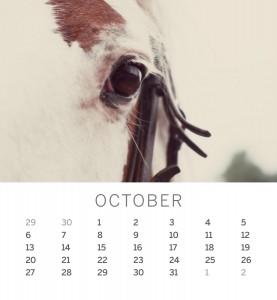 Jofabi 2013 Calendar - October
